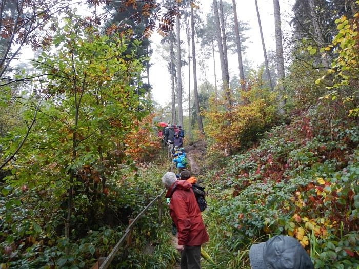 2015_10_18 11_04_20-KVN-Wanderung-Heidenberg